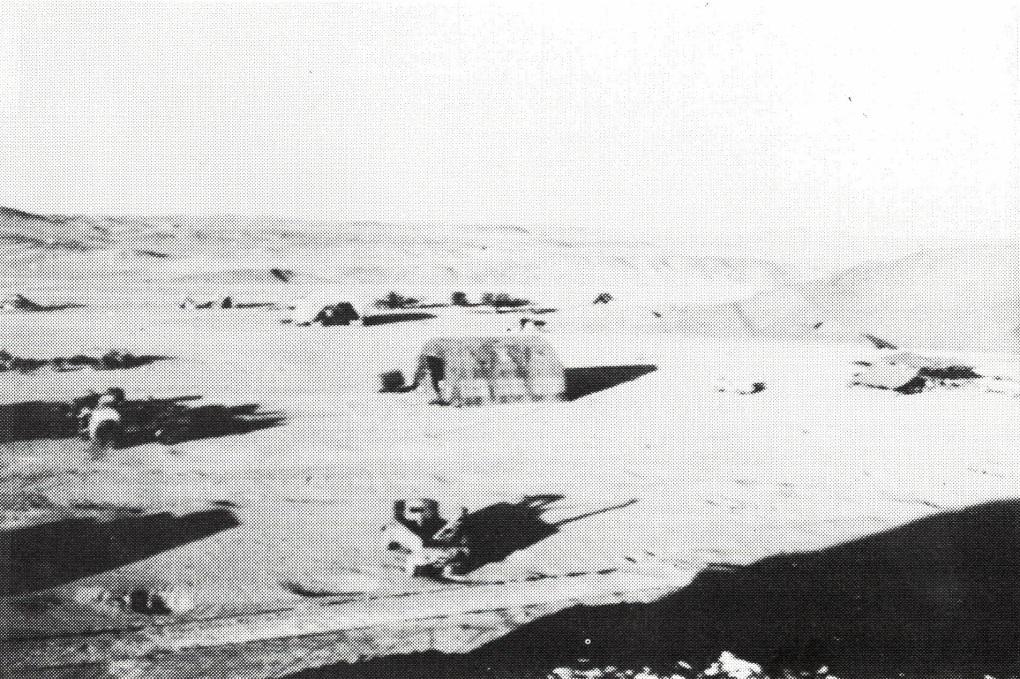 Maadi Camp 1941.1